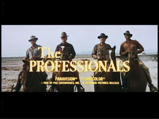 The Professionals Banner