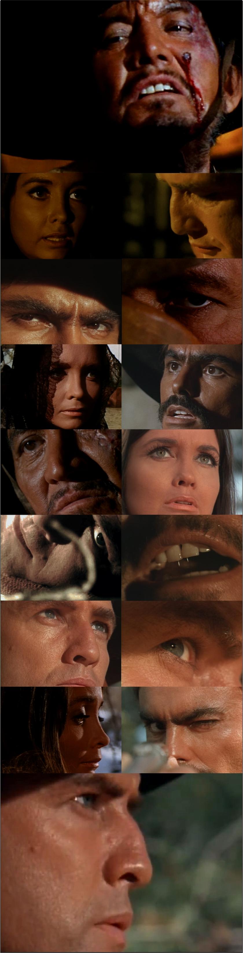 The Appaloosa - Close Ups
