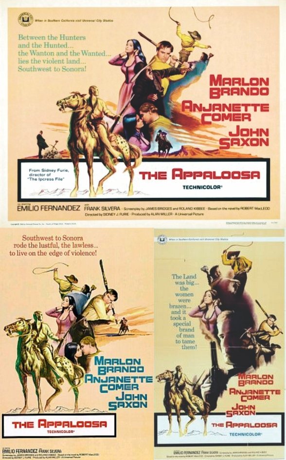 The Appaloosa Posters