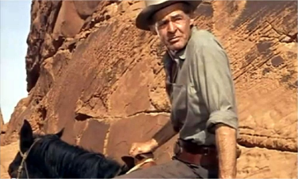 Robert Ryan / The Professionals