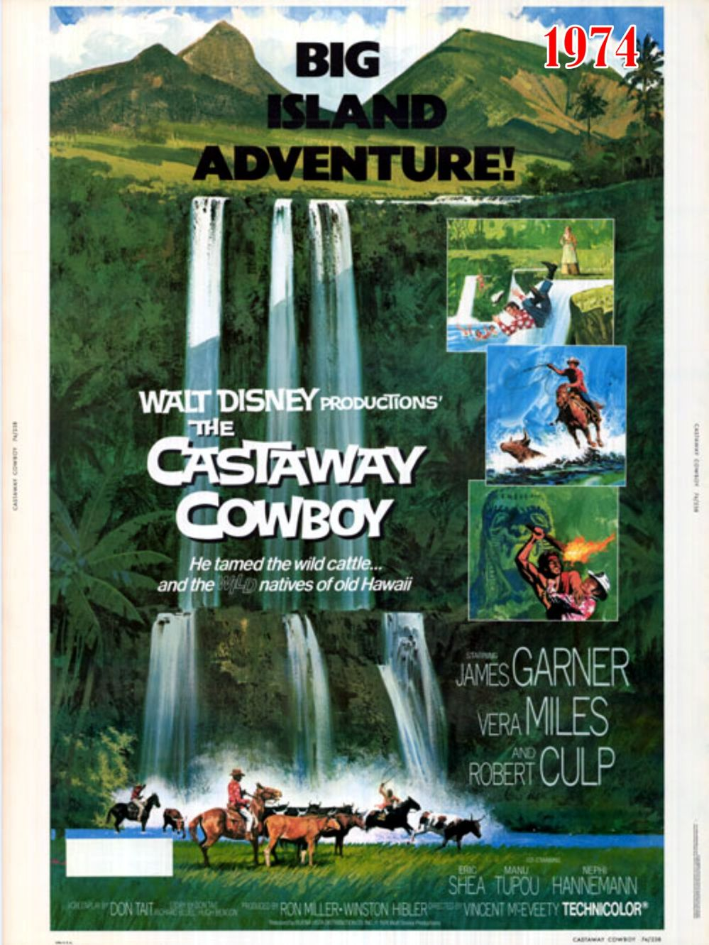 Castaway Cowboy