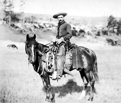 the real cowboy