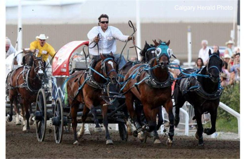 Calgary Stampede Highlights 2014 My Favorite Westerns