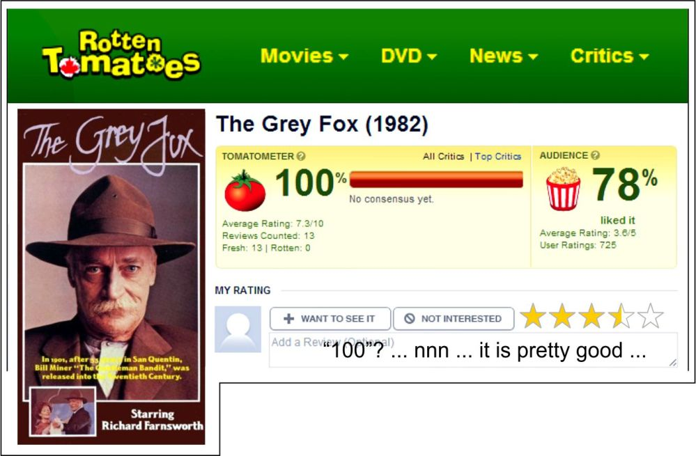 MFW The Grey Fox RT Review