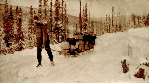 Pulling sled with camp outfit