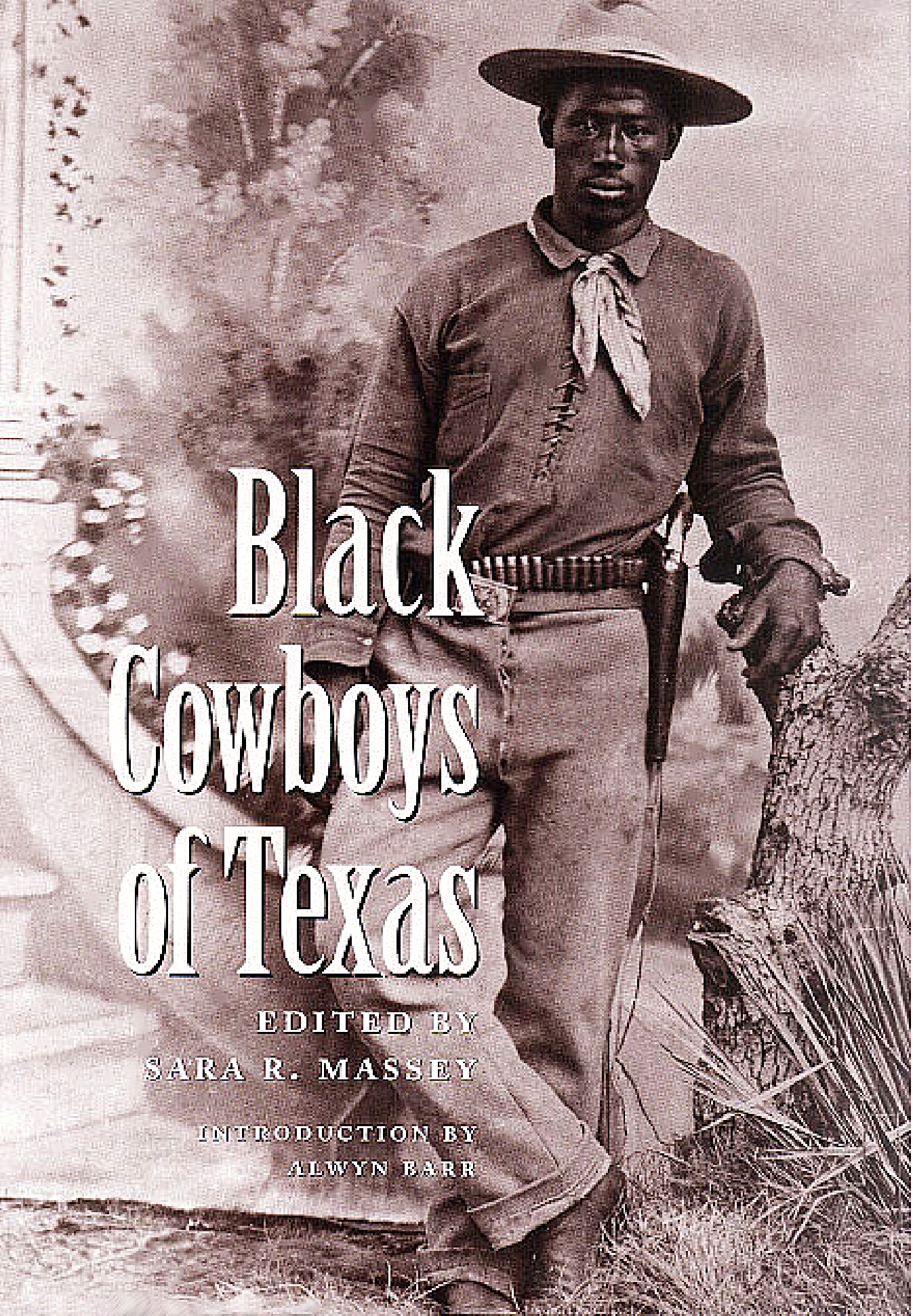 sinaloa cowboys analysis essay