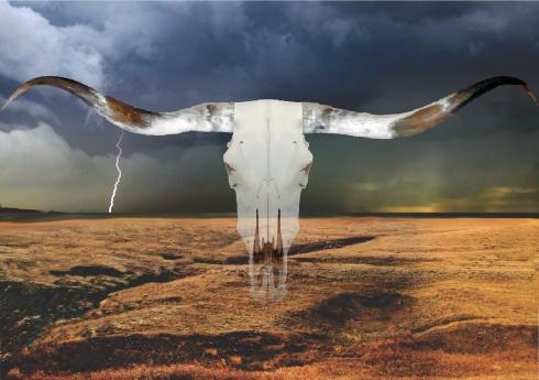 prairie vista 2