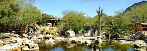 Old Tucson Studios Oasis