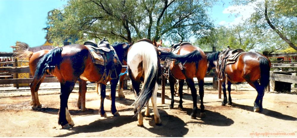 Old Tucson Studios Stables 3