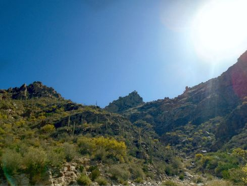 Sabino Canyon at the top