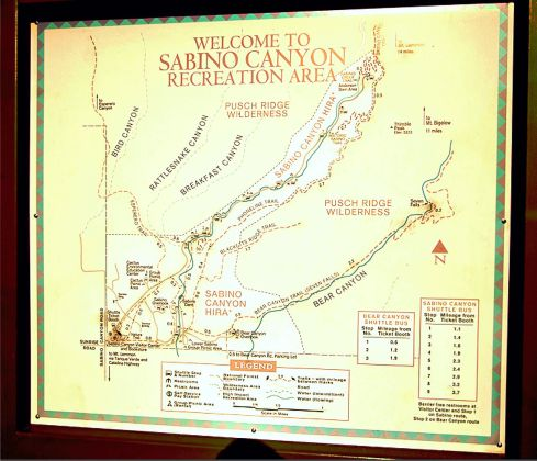 Sabino Canyon map