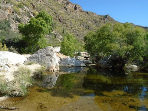 Sabino Canyon on the way up