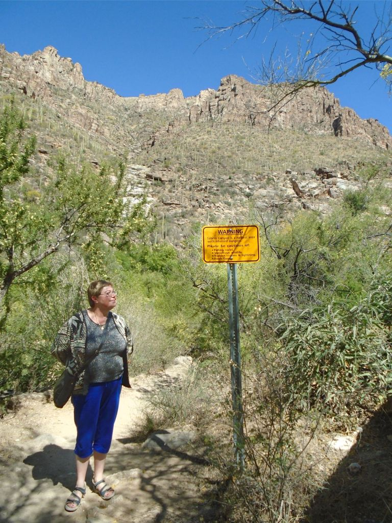 Sabino Canyon sign