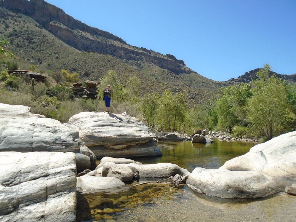 Sabino Canyon waterhole