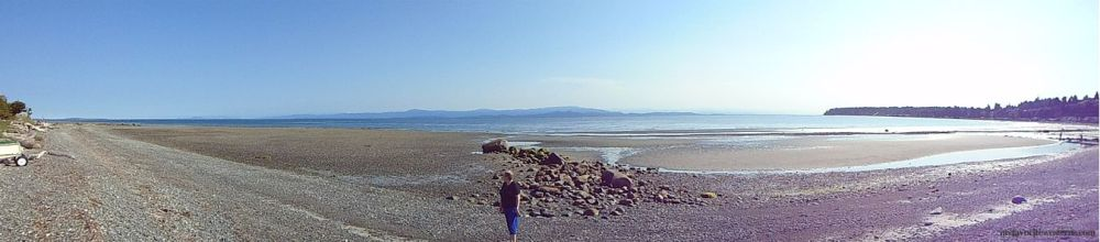 Vancouver Island 15