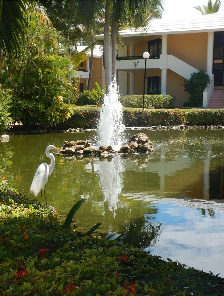 Punta Cana 19
