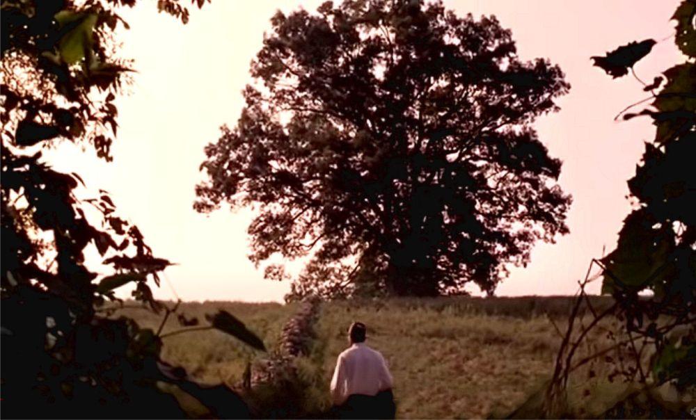Shawshank 1