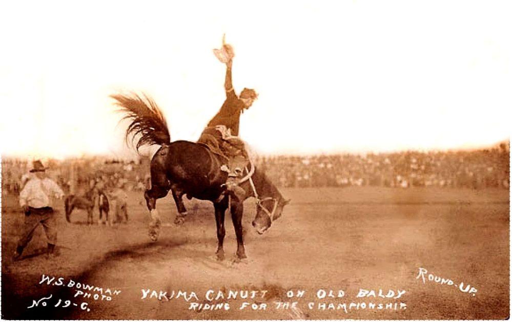 YAKIMA CANUTT saddle bronc 3