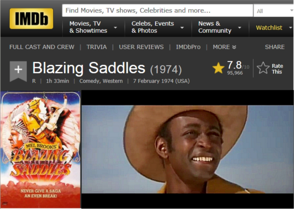 Blazing Saddles IMDB review