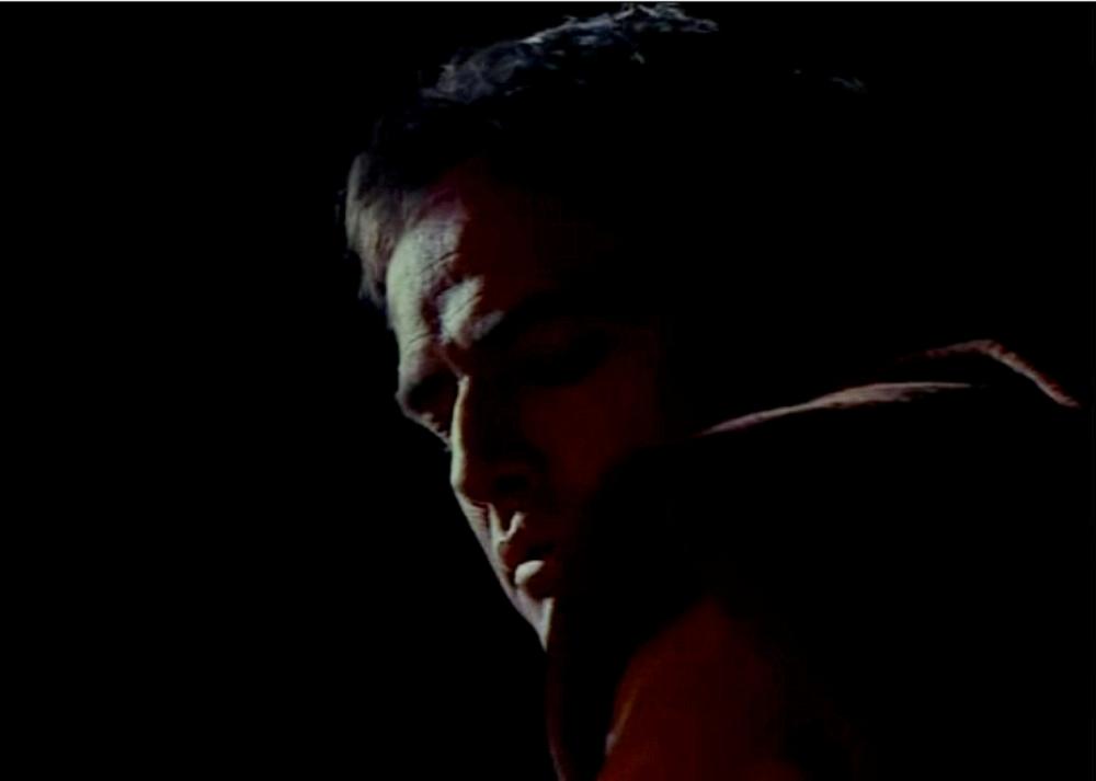 The Appaloosa - Brando 5