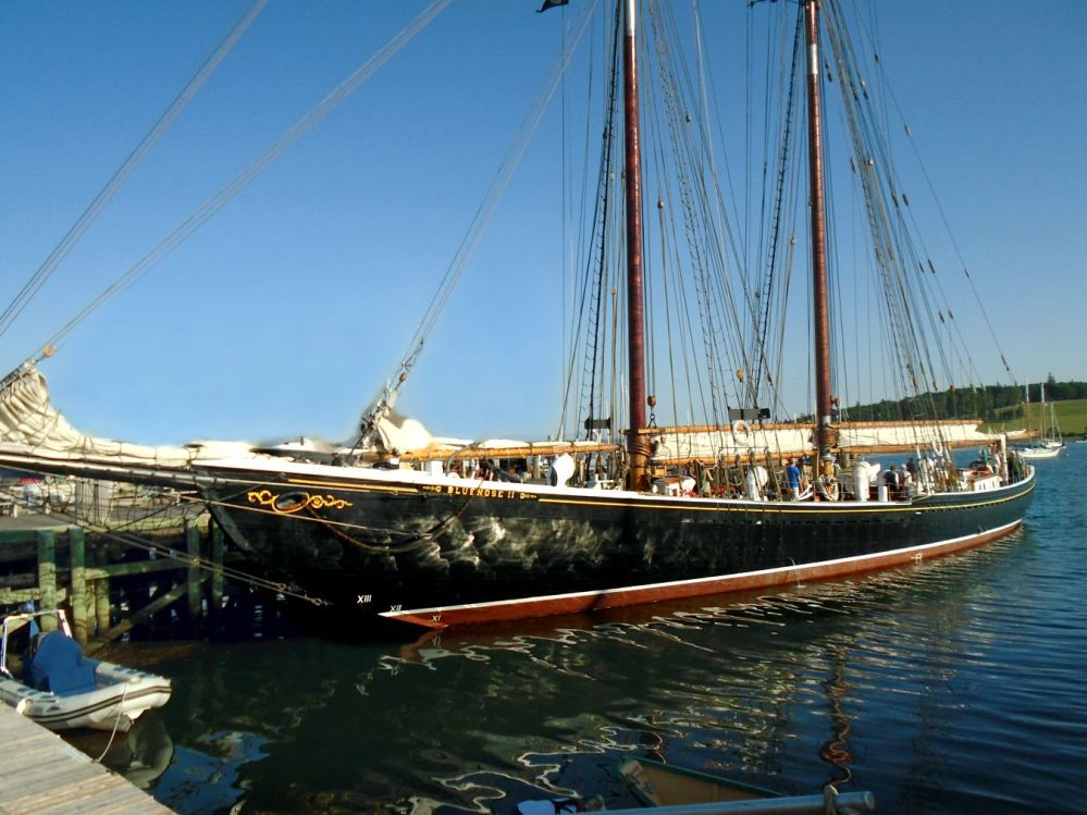 bluenose-at-dock