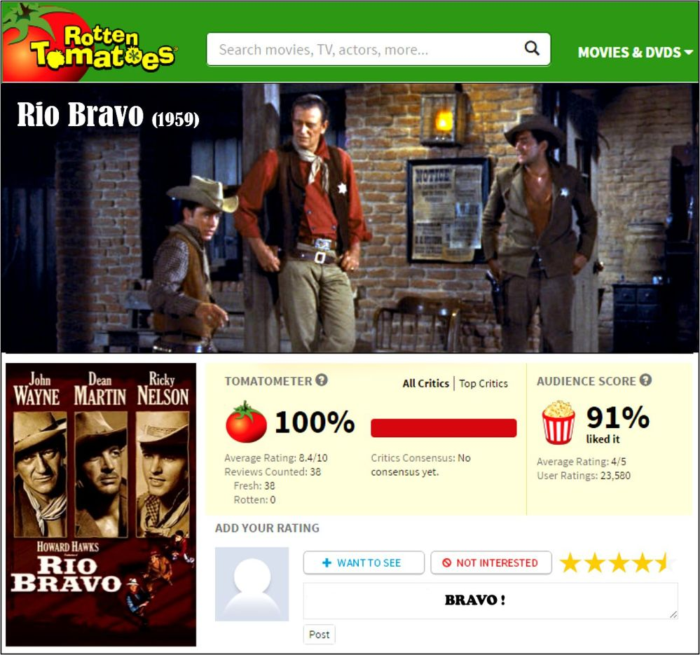 rio-bravo-rt-review